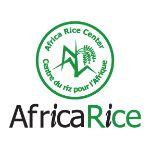 Africa-Rice-Center-Benin.jpg